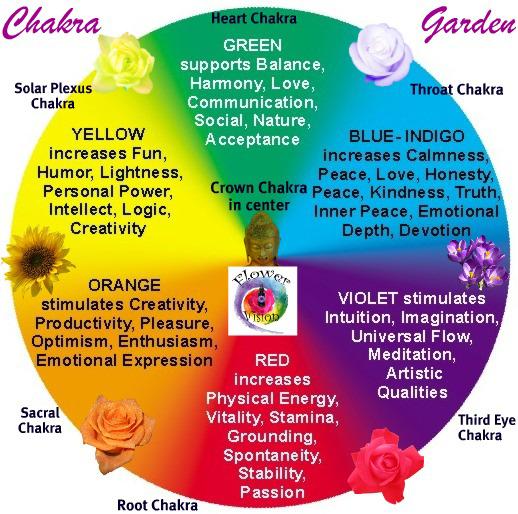 chakra-garden2