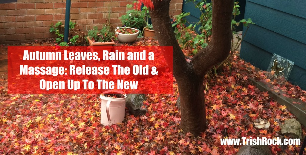 www.trishrock.com autumn leaves