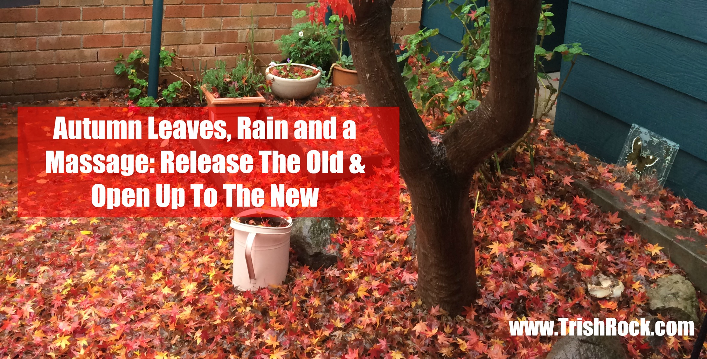 Autumn Leaves, Rain and a Massage…
