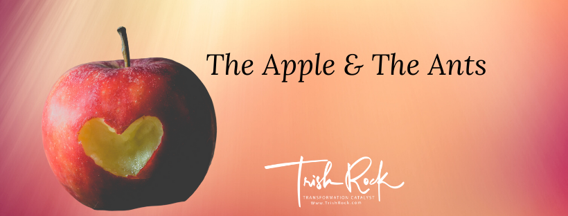 The Apple & The Ants